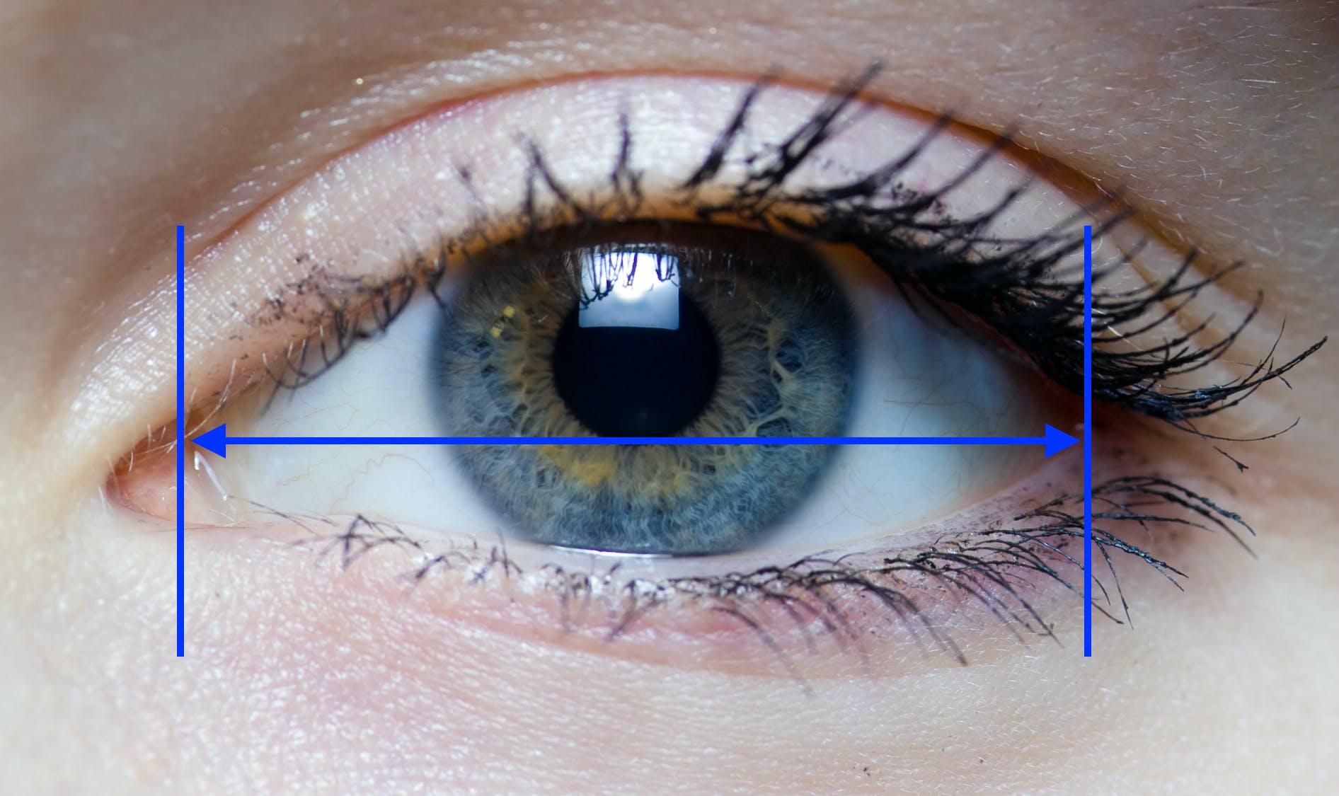 Iris_-_right_eye_of_a_girl.jpg