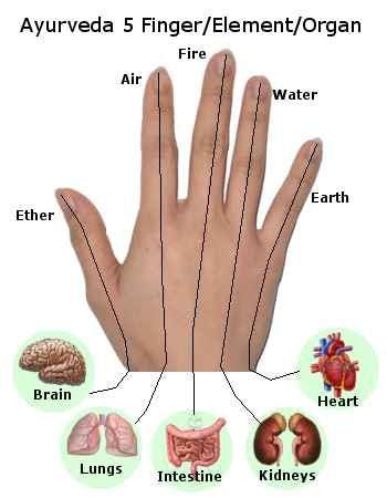 5 fingers and elements.jpg