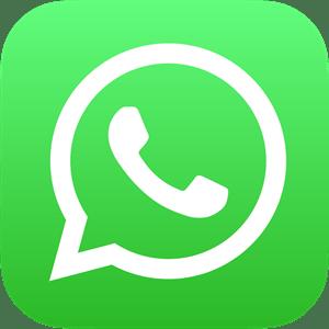 whatsapp-icon-logo-BDC0A8063B-seeklogo.com.png